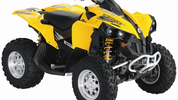 Ficha técnica Can-Am Renegade 800
