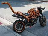 10 صور غريبة عن الدراجات النارية