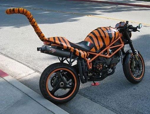 10 fotos curiosas sobre motos